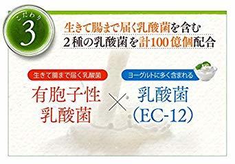 90g(3g×30包) ハーブ健康本舗 モリモリスリムフルーティー青汁 3g&30包 トロピカルフルーツ味 九州産 _画像6
