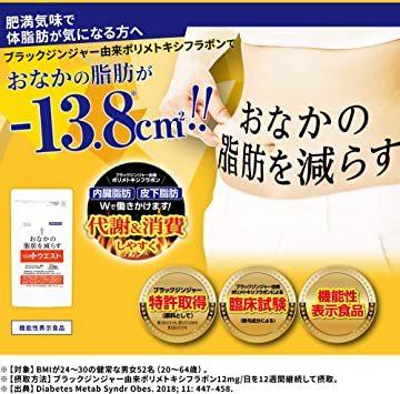 メタプラス ウエスト(お徳用 31日分 通販専用パッケージ)お腹の脂肪を減らす(機能性表示食品)ブラックジン_画像2