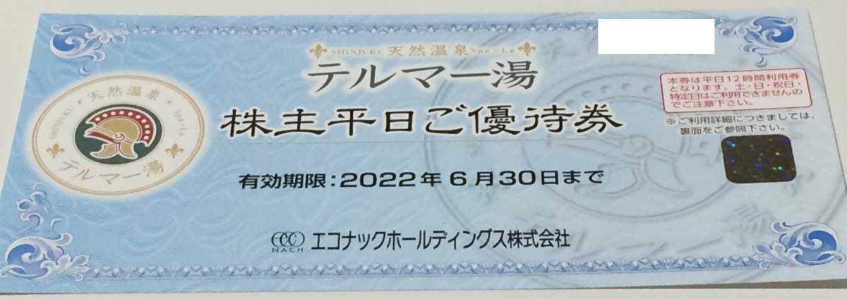 最新 エコナック 株主優待 テルマー湯 平日優待券 _画像1