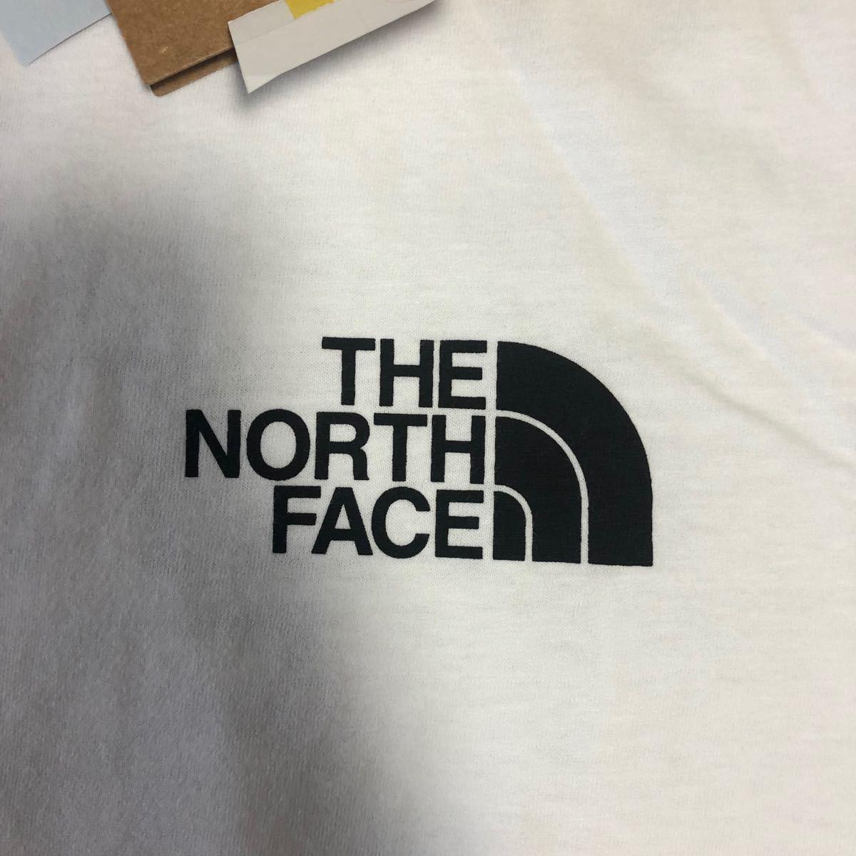 THE NORTH FACE 半袖Tシャツ ザノースフェイス Logo Half DOME