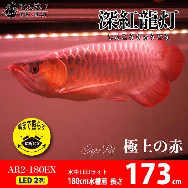 深紅龍灯 アロワナ レッド レベル2 LED 2列 大型水槽 水中照明 アロワナライト アクアリウム 熱帯魚 紅龍 180cm水槽用 でんらい AR2-180EX_画像1