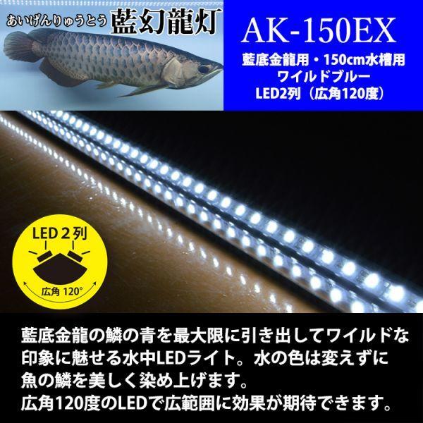 藍幻龍灯 アロワナ ワイルドブルー 水中照明 LED 2列 ライト アクアリウム 金龍 藍底過背金龍 大型水槽 150cm水槽用 でんらい AK-150EX_商品比較