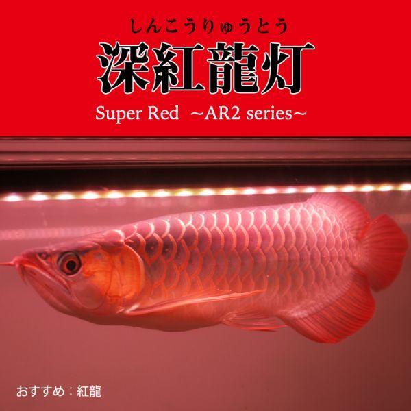 深紅龍灯 アロワナ レッド レベル2 LED 2列 大型水槽 水中照明 アロワナライト アクアリウム 熱帯魚 紅龍 120cm水槽用 でんらい AR2-120EX_画像6