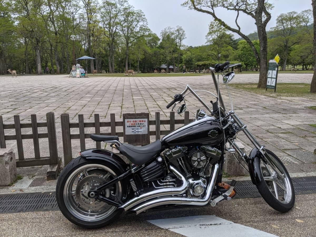 「Harley-Davidson Fxcwc ハーレーダビッドソン ソフテイル ロッカーC 美品 大阪発」の画像1