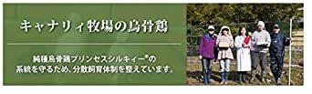純種烏骨鶏「プリンセスシルキィーR」有精卵 10個入り(規格外品) 岐阜県、滋賀県産 安心、安全、栄養満点_画像5