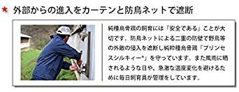 純種烏骨鶏「プリンセスシルキィーR」有精卵 10個入り(規格外品) 岐阜県、滋賀県産 安心、安全、栄養満点_画像7