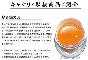 純種烏骨鶏「プリンセスシルキィーR」有精卵 10個入り(規格外品) 岐阜県、滋賀県産 安心、安全、栄養満点_画像2