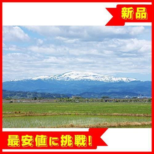 【売切り即決!】 【精米】 山形県産 白米 R015 つや姫 5kg. 令和2年産_画像4