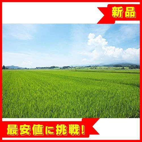 【売切り即決!】 【精米】 山形県産 白米 R015 つや姫 5kg. 令和2年産_画像6