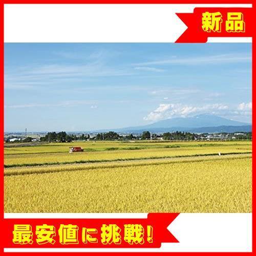 【売切り即決!】 【精米】 山形県産 白米 R015 つや姫 5kg. 令和2年産_画像8