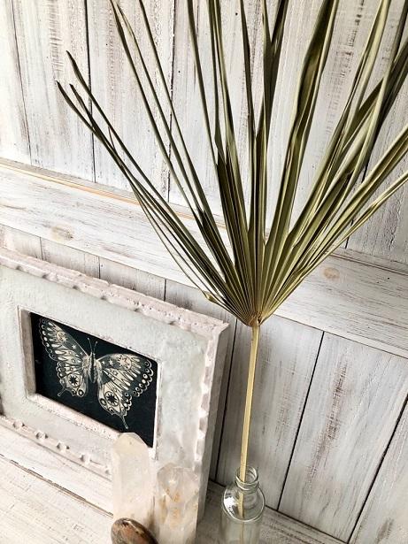 星月猫★「シュロの葉っぱ1枚」そのまま飾って可愛いドライフラワー 花材 インテリアやスワッグ 撮影小道具などに_画像3