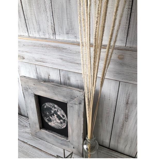 「 ファベリグラス10本 オフホワイト」 そのまま飾って可愛いドライフラワー 花材 インテリアやスワッグ 撮影小道具などに_画像4