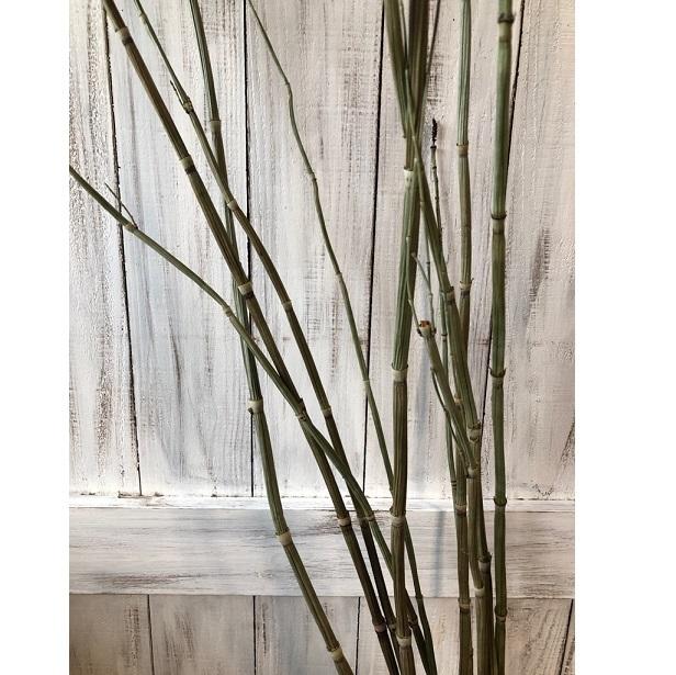 トクサ スーパーロング最長105cm 10本セット ドライフラワー花材  スワッグ そのままインテリアや撮影小物に 星月_画像3