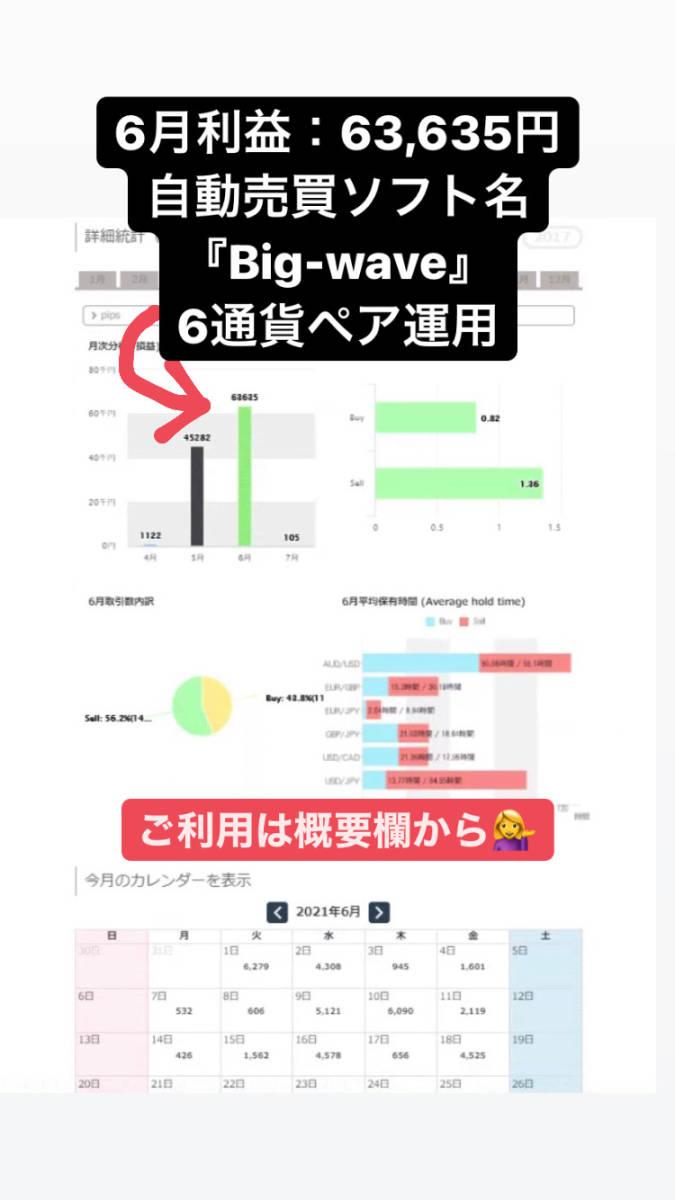 今だけ1万円値下げキャンペーン!【限定】月利20-100% FXオリジナル自動売買ソフト_画像10