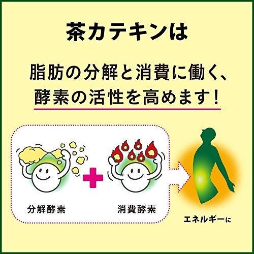 [トクホ] ヘルシア ヘルシア緑茶 うまみ贅沢仕立て 500ml×24本_画像6