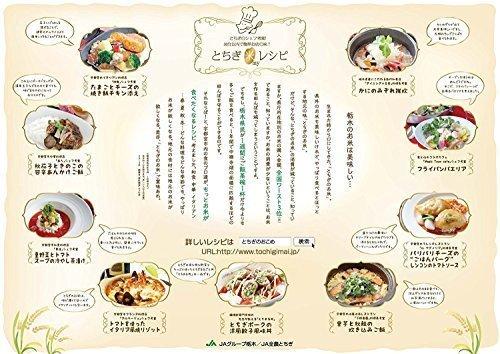 新品白米5kg 【精米】栃木県産 白米 とちぎの星 5kg 令和2年産RK2H_画像3