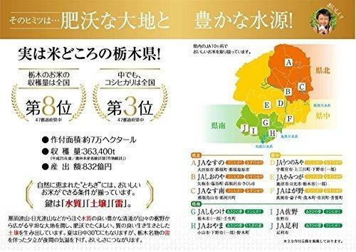 新品白米5kg 【精米】栃木県産 白米 とちぎの星 5kg 令和2年産RK2H_画像2