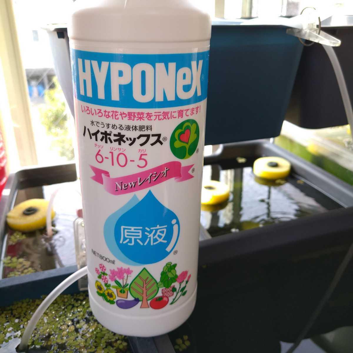 グリーンウォーター 促進剤 ハイポネックス30ml 150㍑分のグリーンウォーターを格安最速で作れる 錦鯉 メダカ の栄養源 稚魚 ミジンコの餌_画像2