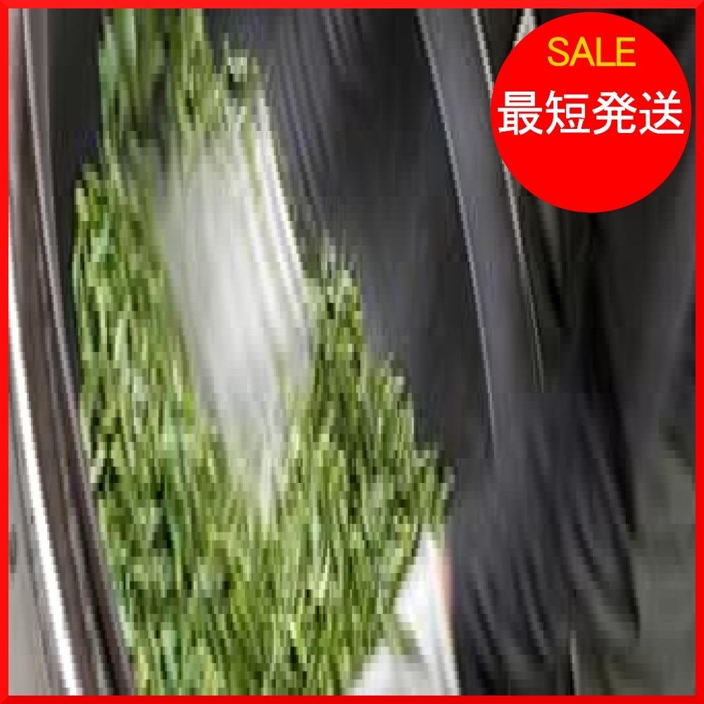 【在庫限り】 食べる緑茶 粉末茶 無農薬栽培 kIK1K 有機JAS認定 70g 宮崎茶房_画像4