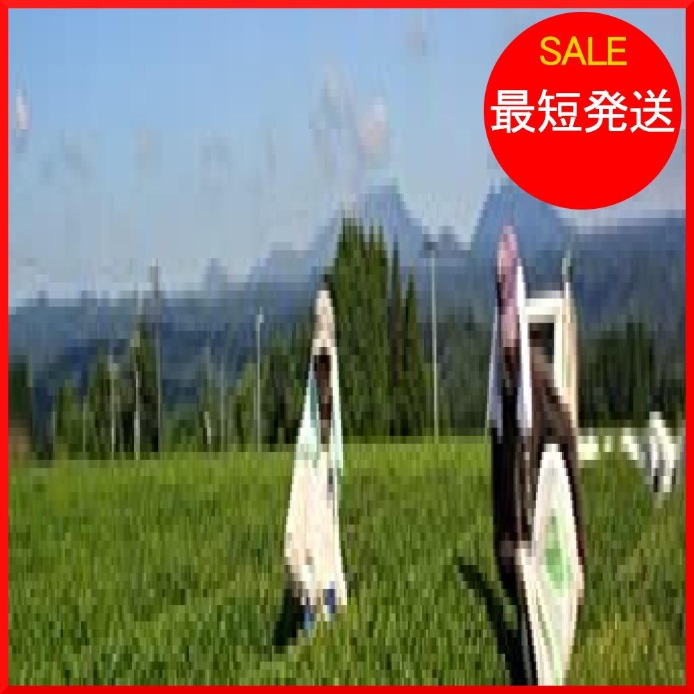 【在庫限り】 食べる緑茶 粉末茶 無農薬栽培 kIK1K 有機JAS認定 70g 宮崎茶房_画像3