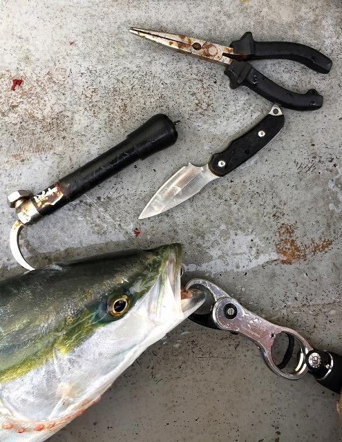 一撃スティック 旨い魚を持ち帰る 魚の脳〆用漁具_画像8