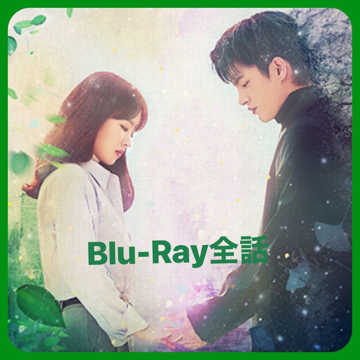 韓国ドラマ  ある日、私の家の玄関に滅亡が入ってきた Blu-Ray全話