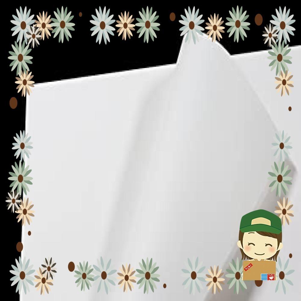 【特価】フジパック 純白紙 片面ツヤ加工 包装紙 100枚_画像1