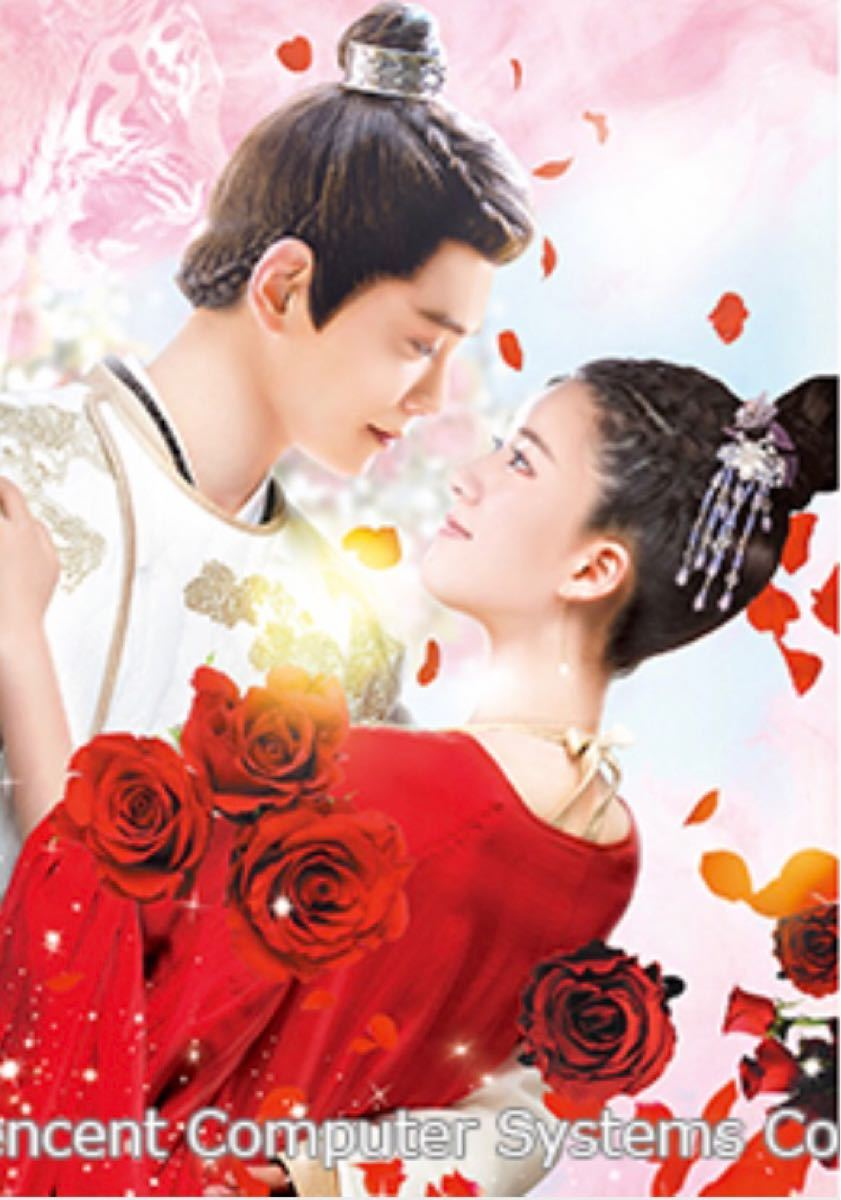 中国ドラマ 花の都に虎われて Blu-ray 1〜14話