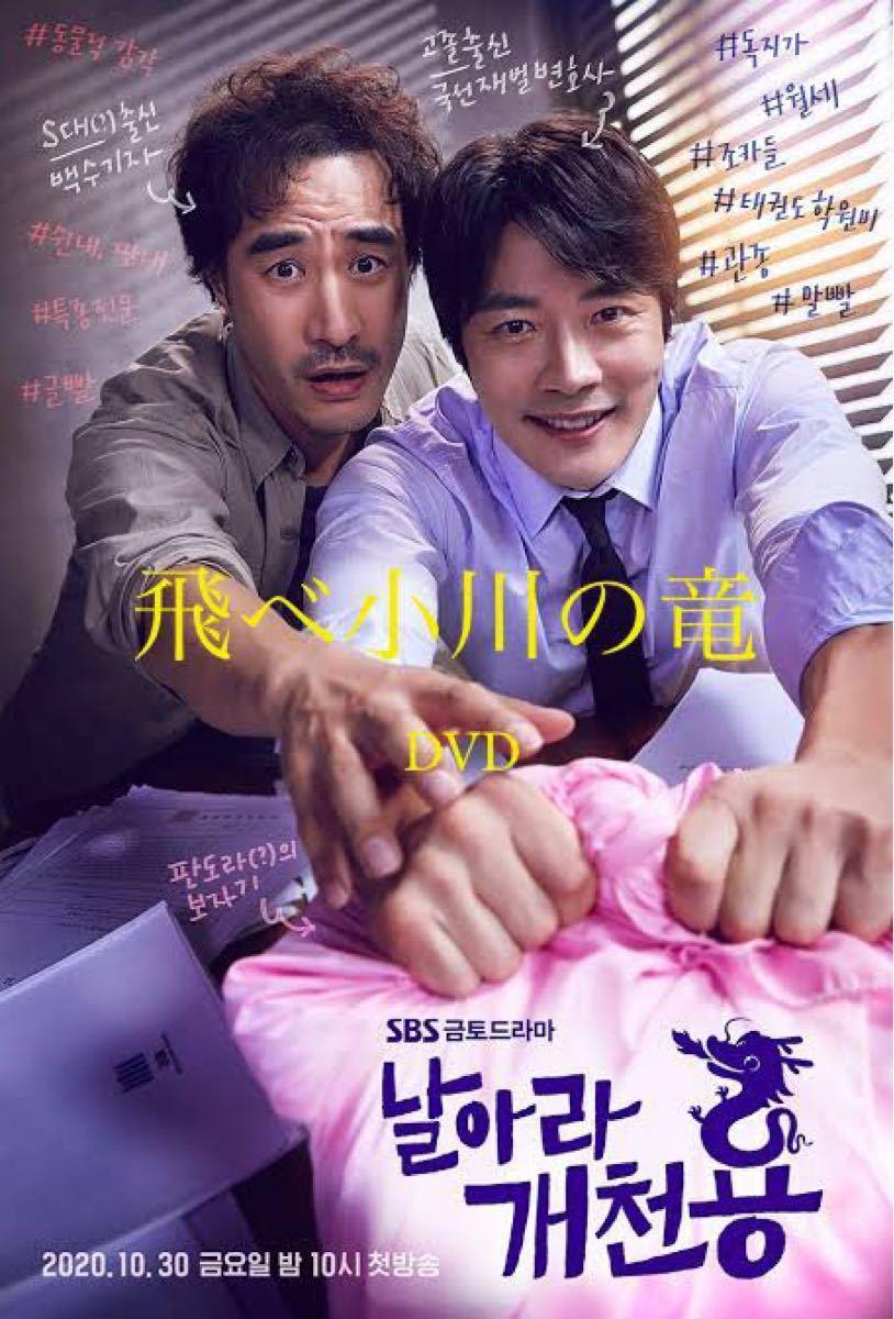 韓国ドラマ 飛べ小川の竜 DVD『レーベル印刷有り』全話