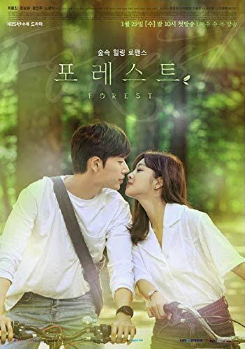 韓国ドラマ フォレスト DVD『レーベル印刷有り』全話
