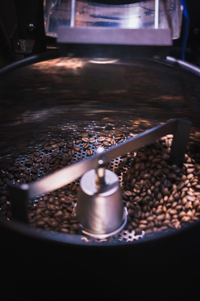 コーヒー豆 コロンビア エルパライソ農園 ダブルアナエロビック お試し付き Rabbit village
