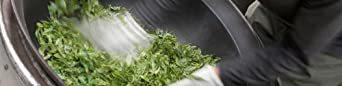 宮崎茶房(有機JAS認定、無農薬栽培)、有機国産紅茶(リーフ)50g、_画像3