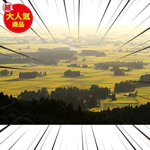 【精米】 [Amazon限定ブランド] 580.com 秋田県産 無洗米 あきたこまち 5kg 令和2年産_画像4