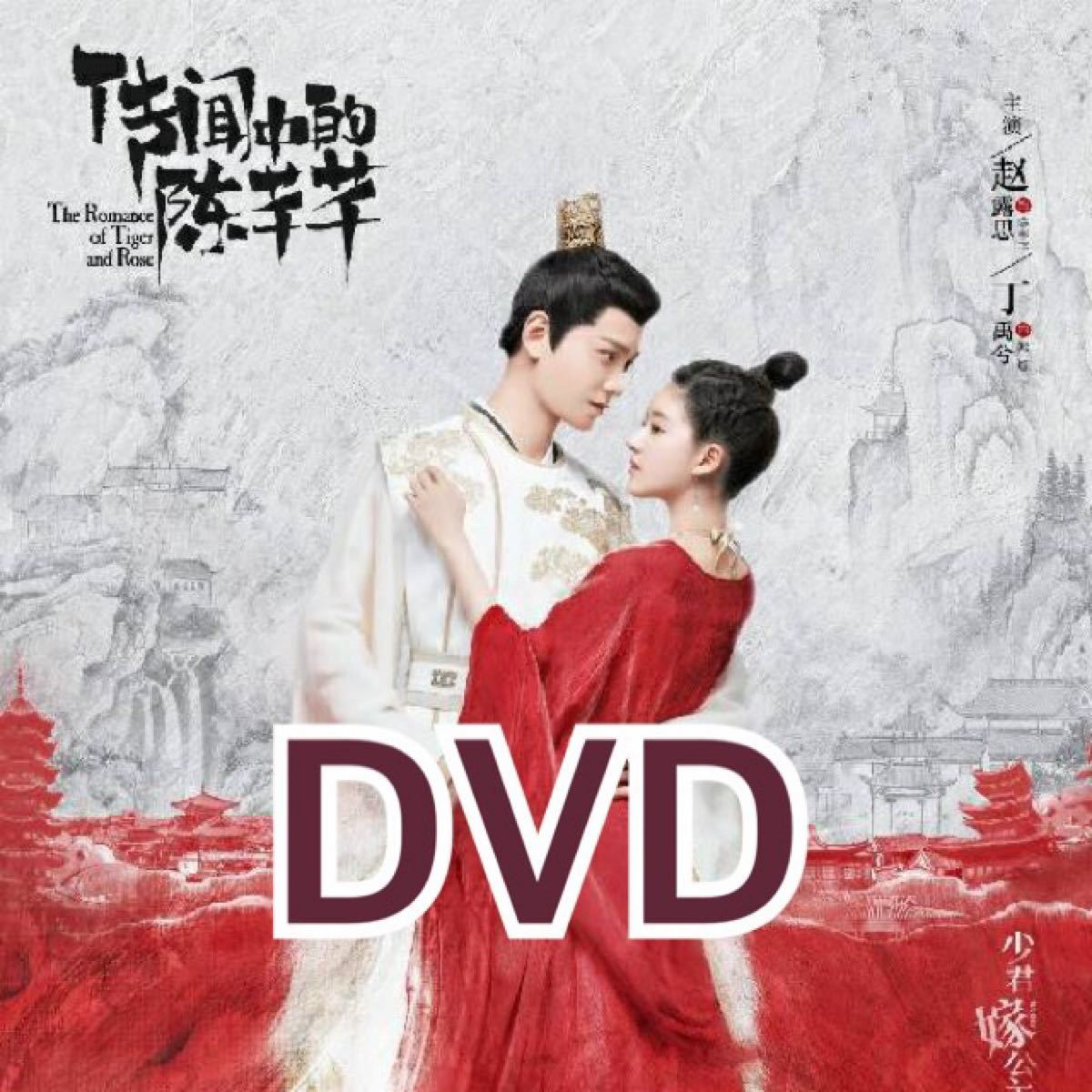 中国ドラマ 花の都に虎(とら)われて DVD