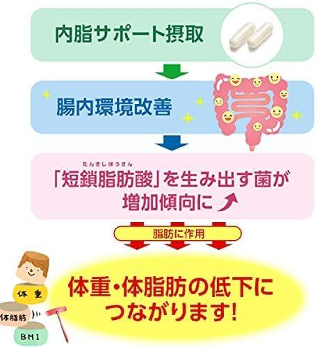 ファンケル (FANCL) 内脂サポート (約30日分) 120粒 (機能性表示食品) ダイエット サポート 体脂肪 サプリ_画像8