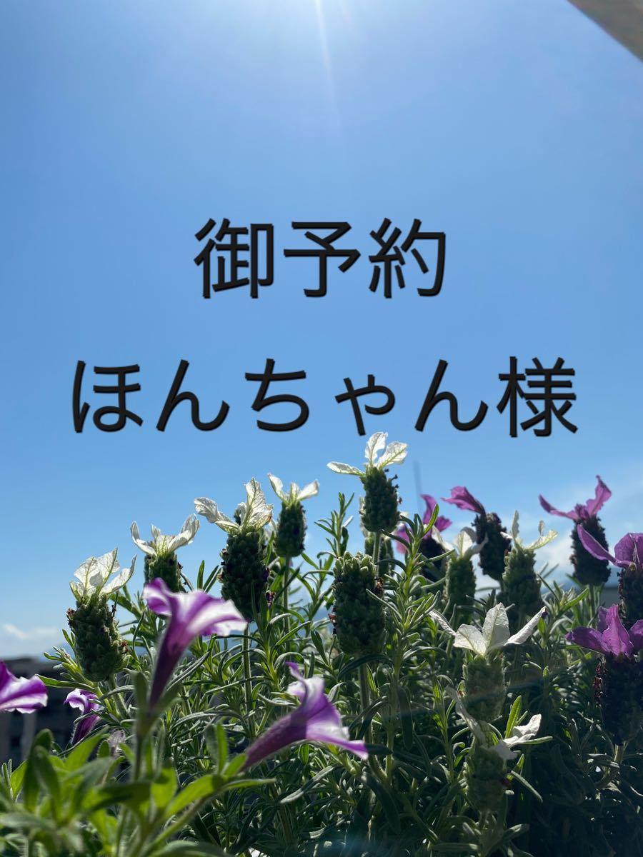 立体インナー ハンドメイド  薔薇柄 (大) ベージュ/ピンク