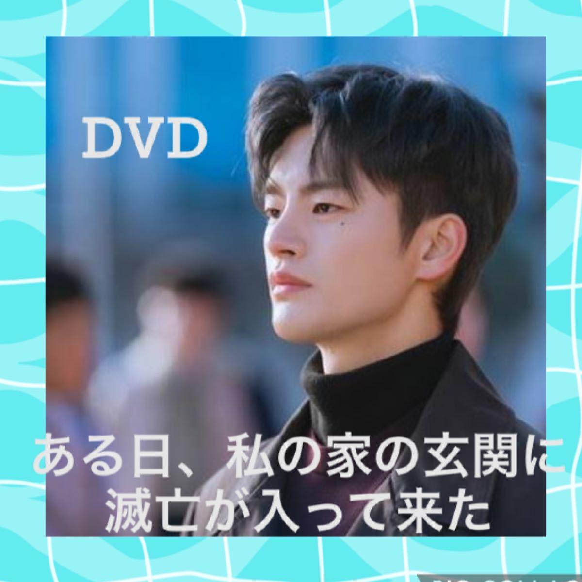韓国ドラマ ある日、私の家の玄関に滅亡が入ってきた DVD全話【レーベル印刷あり】