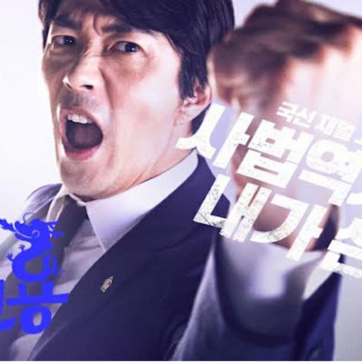 飛べ小川の竜 DVD全話【レーベル印刷あり】 韓国ドラマ
