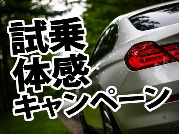 「X1 sドライブ 20i ファッショニスタ 限定車 本革 HDDナビ Bカメラ PDC キセノン」の画像3