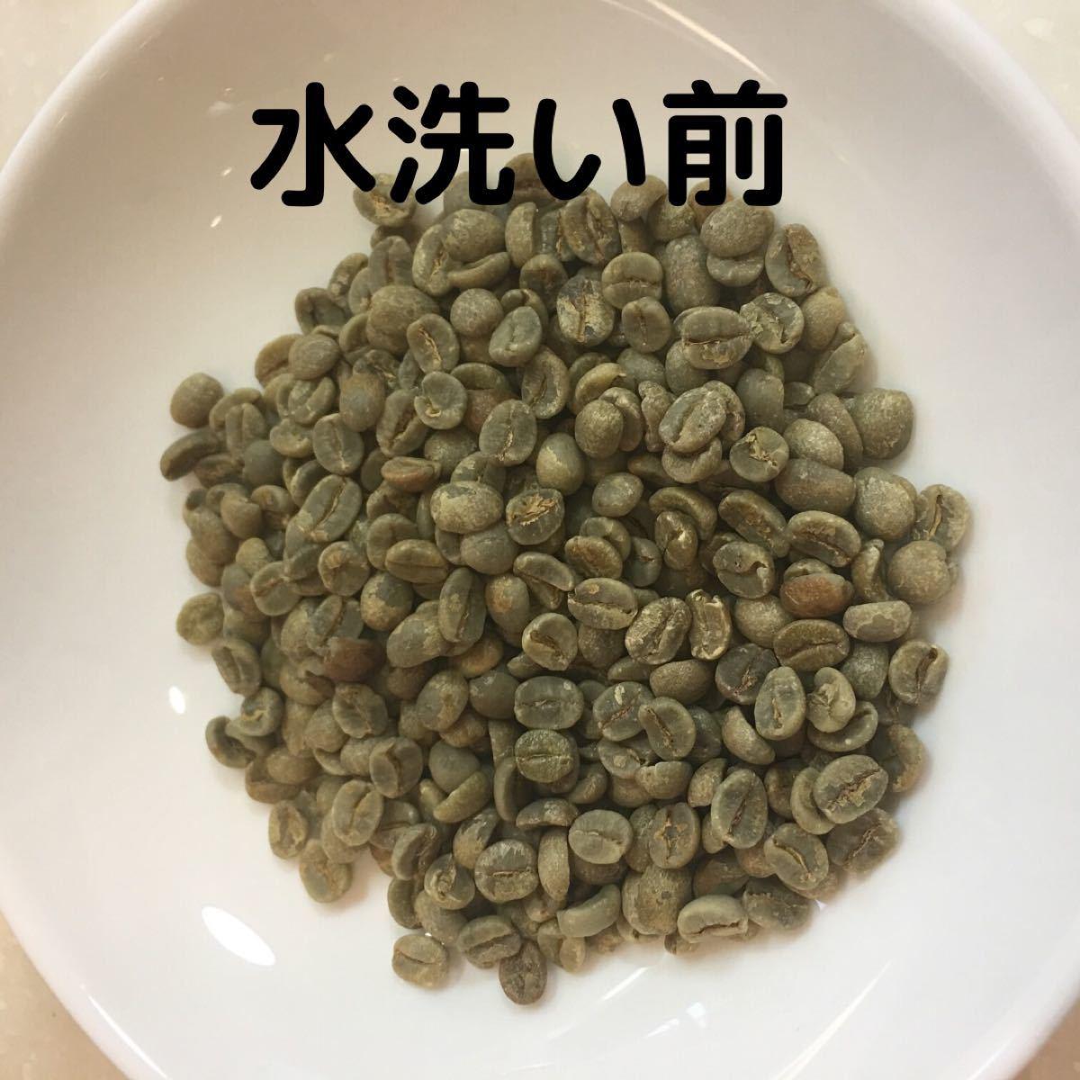 自家焙煎 インドネシア マンデリンシナール 300g 豆又は粉 匿名配送