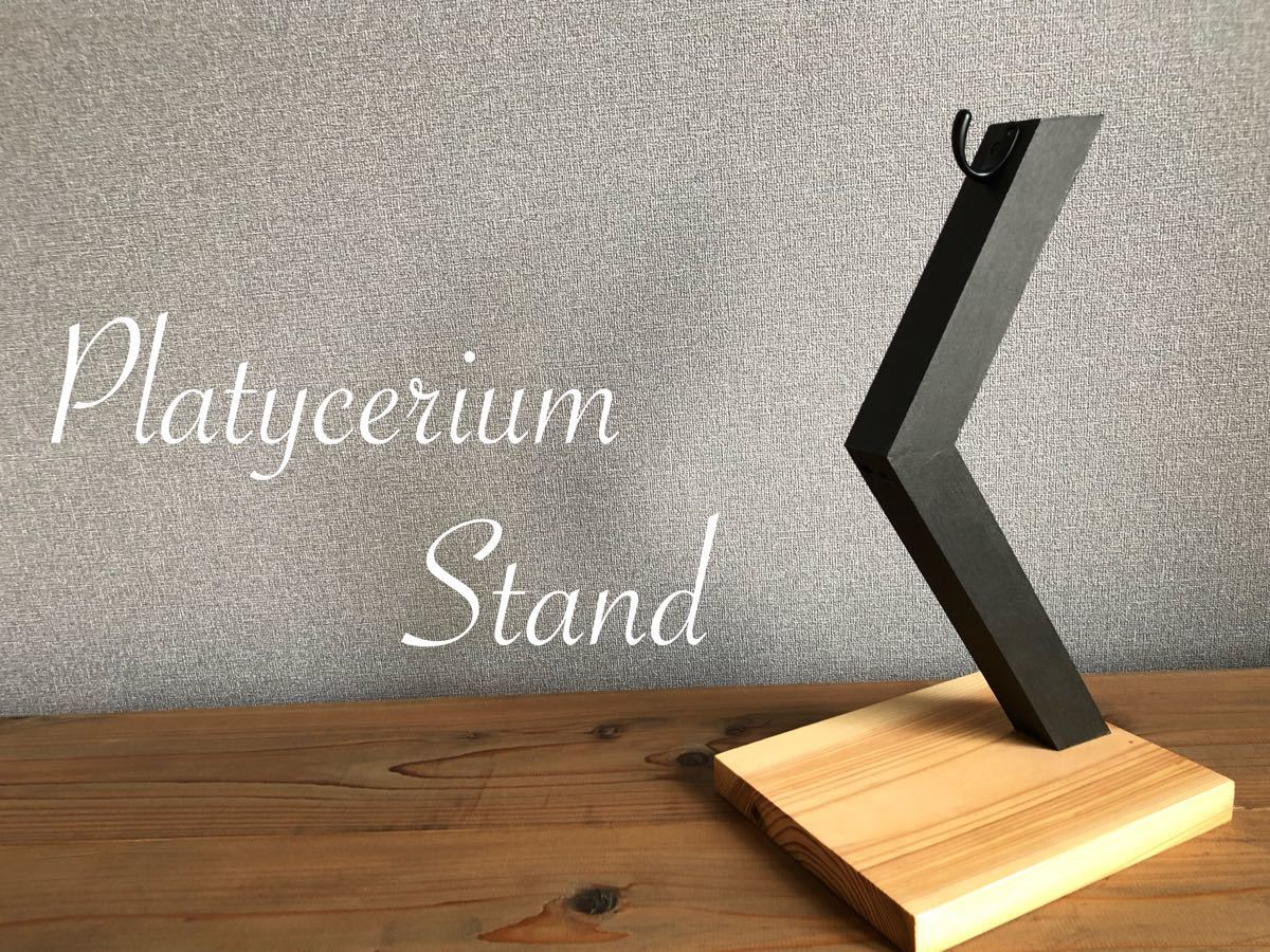 Platycerium-stand ビカクシダスタンド / カラー:ナチュラル