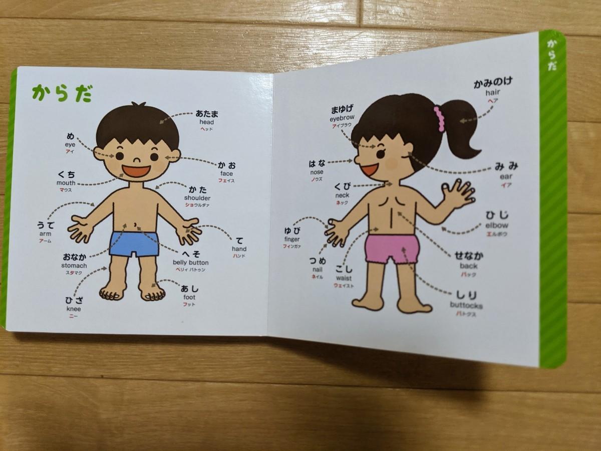 3冊まとめて知育絵本 こどもずかん 英語 図鑑 0、5才向け絵本
