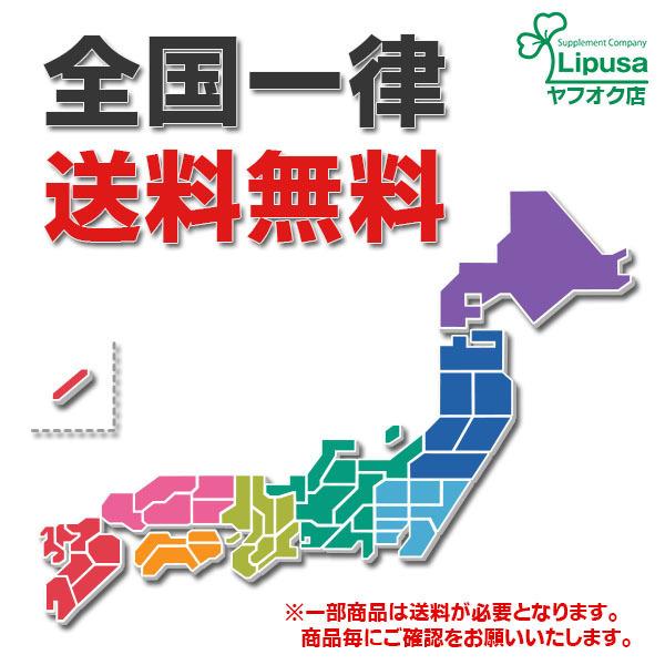 【リプサ公式】 高麗紅参(高麗人参) 約3か月分×2袋 C-175-2 サプリメント サプリ 健康食品 送料無料_送料無料