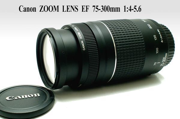 Canon キャノン EOS純正 EF 75-300mm オートフォーカス望遠ズームレンズ 完動品
