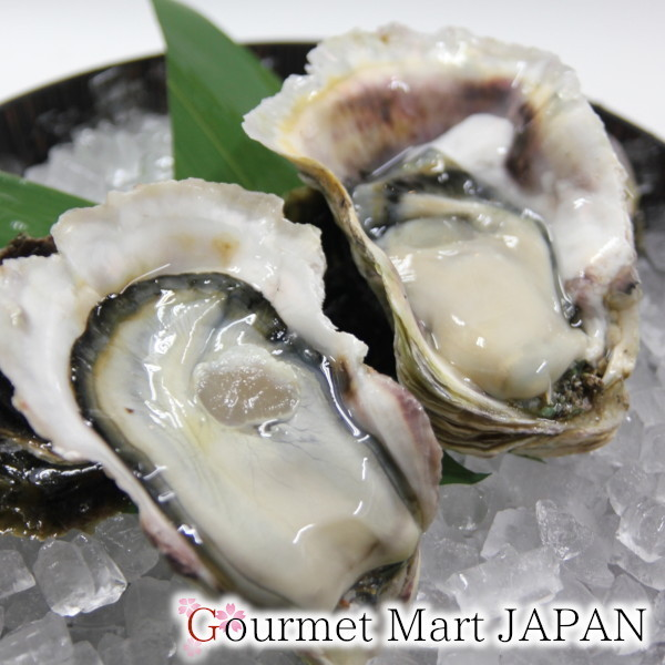 【グルメマートJAPAN】産地直送 北海道厚岸産 殻付き生牡蠣 マルえもん [3L(150g~)] 30個セット_画像3