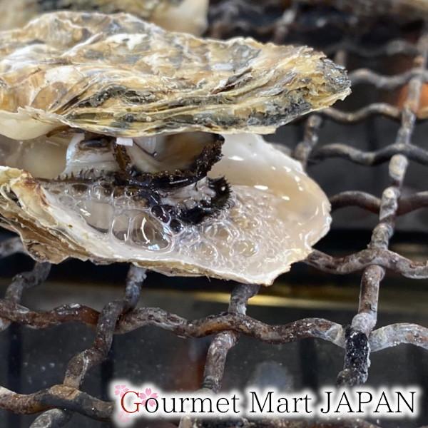 【グルメマートJAPAN】産地直送 北海道厚岸産 殻付き生牡蠣 マルえもん [3L(150g~)] 10個セット_画像5