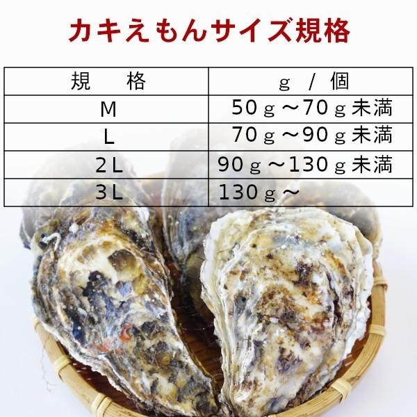 【グルメマートJAPAN】産地直送 北海道厚岸産 殻付き生牡蠣 カキえもん [L(70g~90g)] 10個セット_かき 牡蠣 カキえもん 生牡蠣 殻付き牡蠣