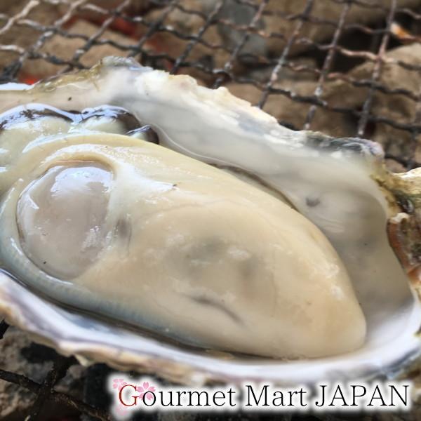 【グルメマートJAPAN】産地直送 北海道厚岸産 殻付き生牡蠣 カキえもん [L(70g~90g)] 10個セット_画像6