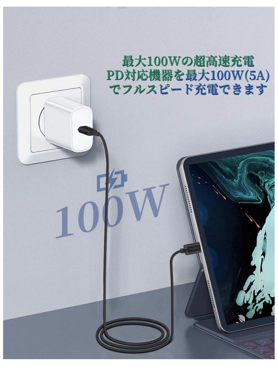 USB Type C ケーブル PD対応100W/5A急速充電 【 USB 3.1 Gen1 4K/60Hz 映像出力】