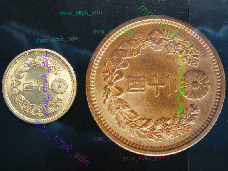 新20円金貨 大正5年 日本貨幣商協同組合鑑定書付き_鑑定書写真との比較:菊紋面
